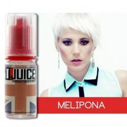 Arômes Solubarome - Melipona concentré