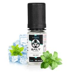 Ice Mint Salt E-Vapor 10 mL - Le French Liquide